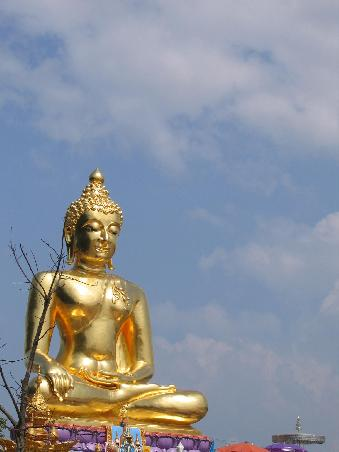 Buddha in the sky (# 647)